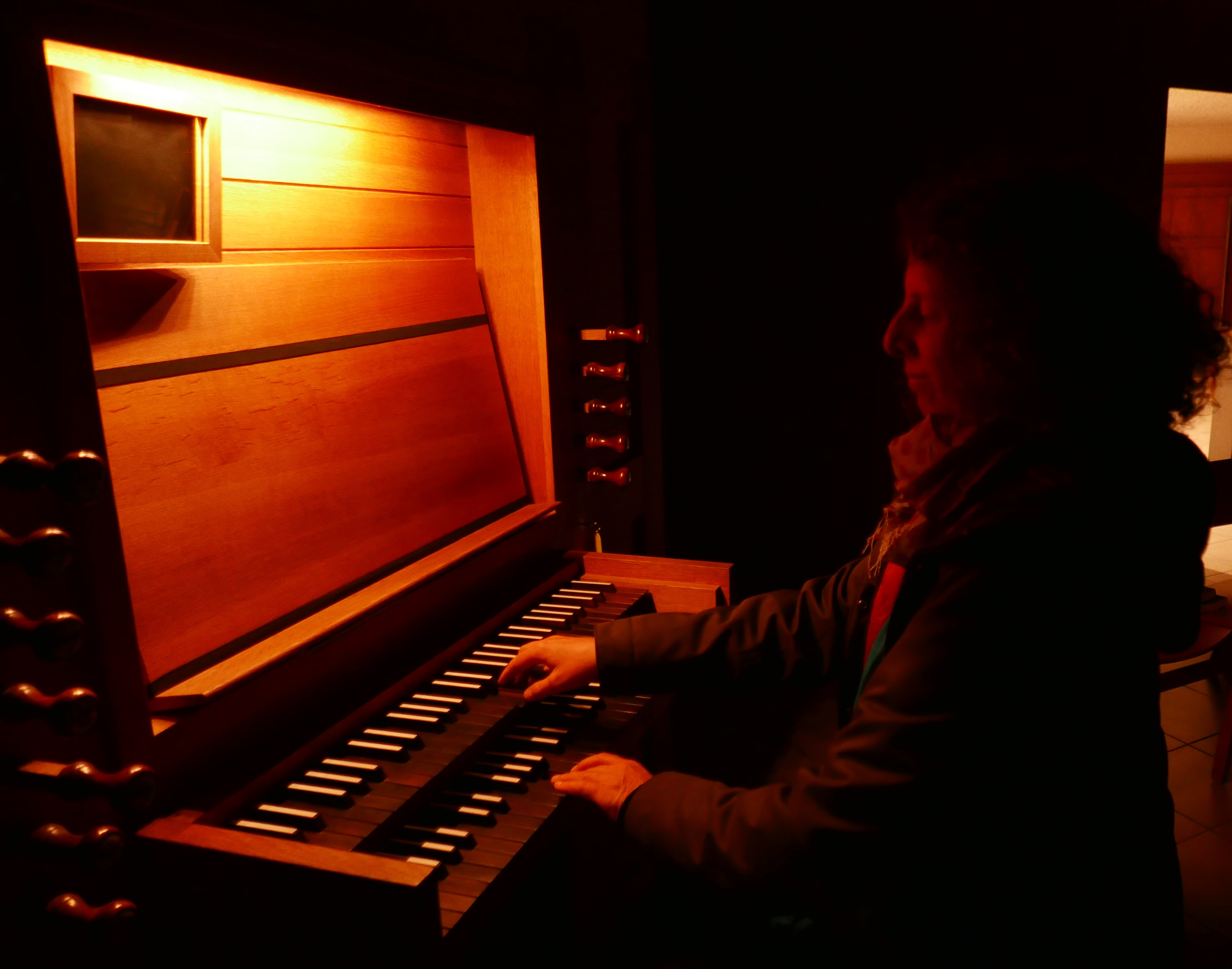 Anette an der Orgel